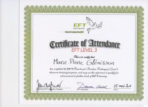 EFT niveau 3