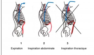 respiration cohérence cardiaque